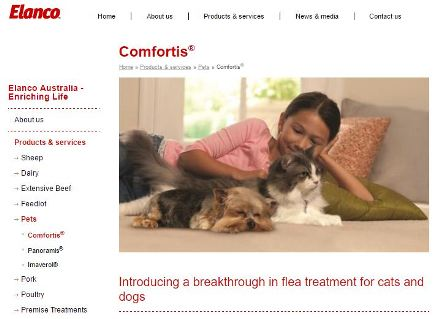 Comfortis website
