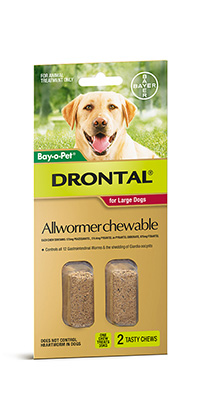 Drontal_Dog_2-Chews_Large-Dog.jpg